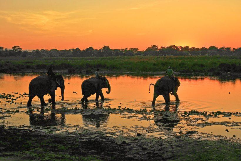 Hisa Potovanj Indija Chitwan 1