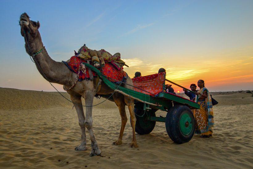 Hisa Potovanj Indija Rajasthan 2001 Kamelja Vprega