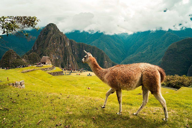 Hisa Potovanj Peru 01